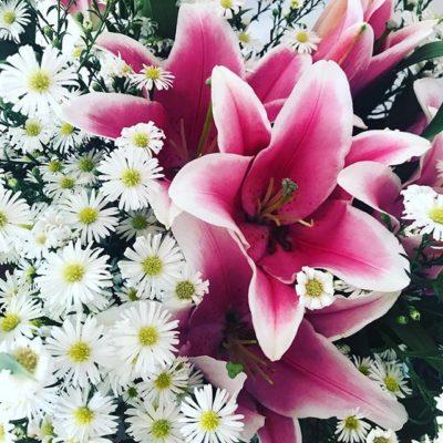 Flores con Stargazer